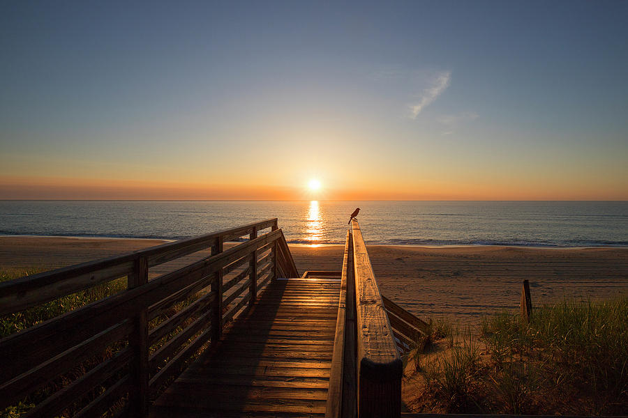 Watching The Sunrise Photograph