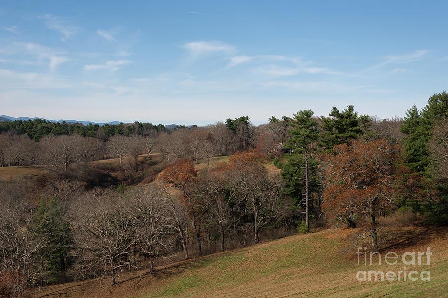 Winter Solace - Asheville Nc Photograph