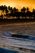 Sunset At The Beach Print by Sebastian Musial