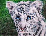 White Tiger Cub Print by Jai Johnson