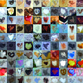 Eight Hundred Series by Boy Sees Hearts