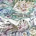 Sea World by Milen Litchkov
