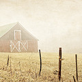 Blue Ridge Farm by Darren Fisher