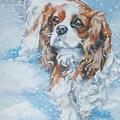 Cavalier King Charles Spaniel Blenheim In Snow by Lee Ann Shepard