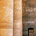 Columns With Hieroglyphs Depicted Horus At The Temple Of Edfu by Sami Sarkis