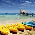 Fiji, Malolo Island by Himani - Printscapes