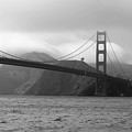 Golden Gate by Ofelia  Arreola