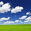 Green Rolling Hills Under Blue Sky by Elena Elisseeva