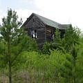 Haunted House by Quwatha Valentine