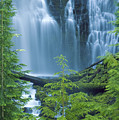 Lower Proxy Falls by Greg Vaughn - Printscapes