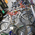 Many Bikes by Marilyn Hunt