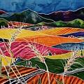 Palouse Fields by Carolyn Doe