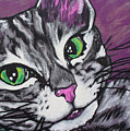 Purple Tabby by Sarah Crumpler
