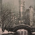 Snow In Central Park by Tom Shropshire