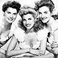 The Andrews Sisters by Granger