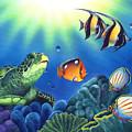 Turtle Dreams by Angie Hamlin