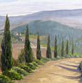 Tuscany Road by Jay Johnson