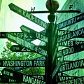 Where To Go by Cathie Tyler