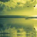 Fullmoon Over The Ocean by Jaroslaw Grudzinski