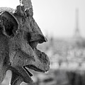 Gargoyle Guarding The Notre Dame Basilica In Paris by Pierre Leclerc Photography