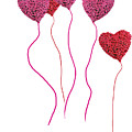 Pink Roses In Heart Shape Balloons  by Michael Ledray