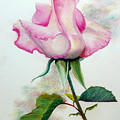 SO PINK Print by KARIN KELSHALL- BEST