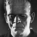 Frankenstein, 1931 by Granger