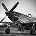 P 51 Mustang by Eric Miller