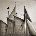 Schooner Pride Tall Ship Charleston Sc by Dustin K Ryan
