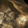Stone-age Cave Paintings, Chauvet, France by Javier Truebamsf