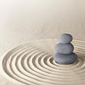 Japanese Zen Garden by Dirk Ercken