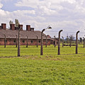 Auschwitz Birkenau Concentration Camp. by Fernando Barozza