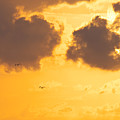 Sunset by Angela Doelling AD DESIGN Photo and PhotoArt
