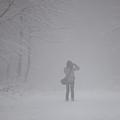 Winter by Gabriela Insuratelu