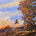 A Pheasent At Sundown by Douglas Trowbridge