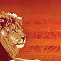 A Roaring Lion Kills No Game by Tai Taeoalii