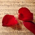 A Romantic Note by Kathy Bucari