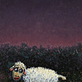 A Sheep In The Dark by James W Johnson