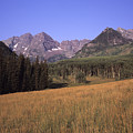 A View Of The Maroon Bells Mountains by Taylor S. Kennedy