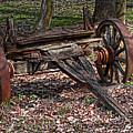 Abandoned Wagon by Tom Mc Nemar