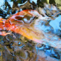 Abstract Fish Art - Fairy Tail by Sharon Cummings