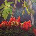 African Tulip by Hunter Jay