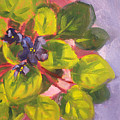 African Violet Still Life Oil Painting by Nancy Merkle