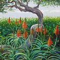 Aloe Vera by Karen Doyle