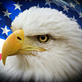 American Pride by Shane Bechler