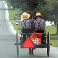 Amish Boys On A Ride by Lori Seaman