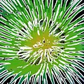 An Abstract Scene Of Sea Anemone 2 by Lanjee Chee