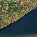 An Aerial View Of A Forest In Autumn by Heather Perry