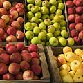 Apple Harvest by Garry Gay