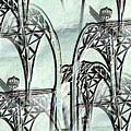 Arches 4 by Tim Allen